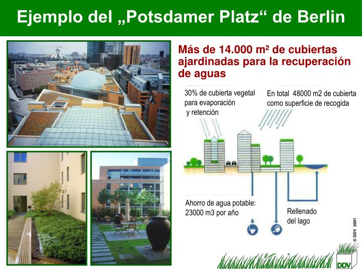 30% de cubierta vegetal