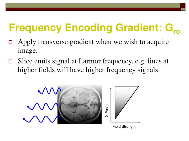 Frequency Encoding Gradient: G