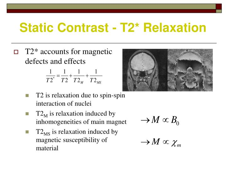 Static Contrast - T2* Relaxation