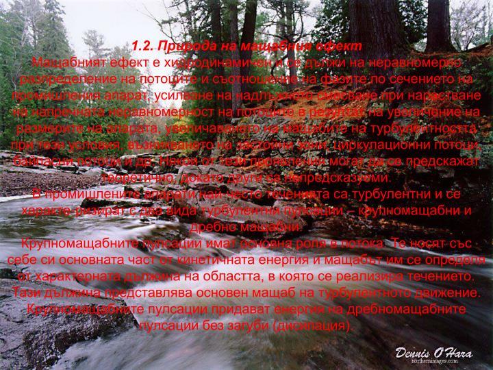 1.2. Природа на мащабния ефект