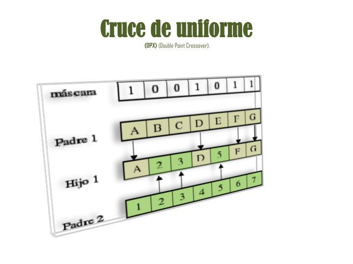 Cruce de uniforme