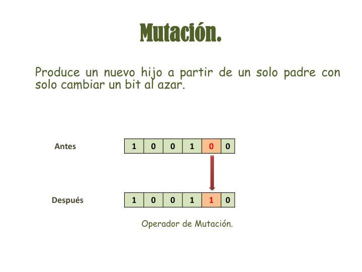 Mutación.
