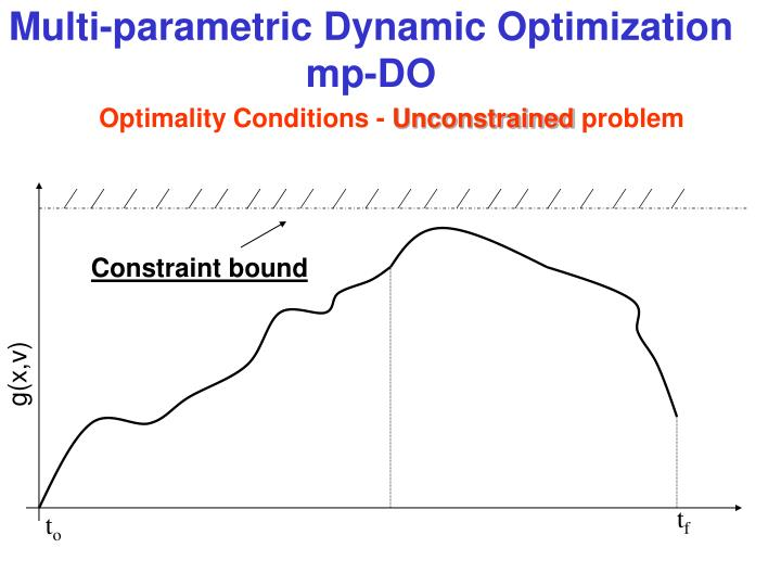 Multi-parametric Dynamic Optimization