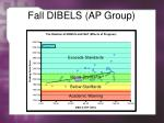 fall dibels ap group