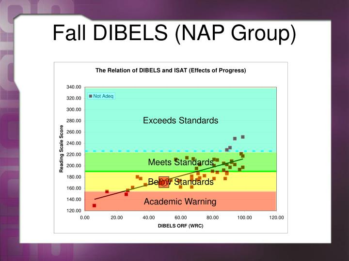 Fall DIBELS (NAP Group)