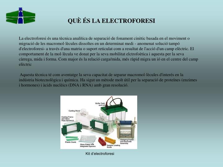 QUÈ ÉS LA ELECTROFORESI