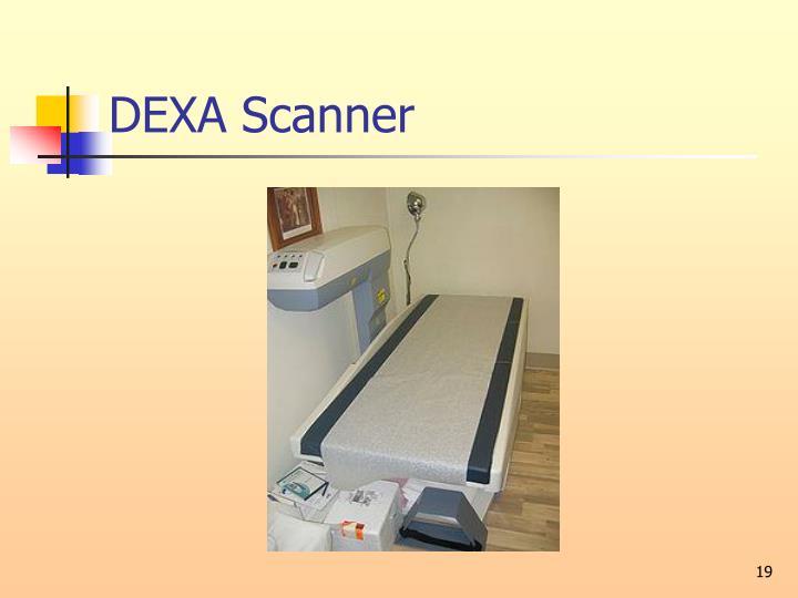 DEXA Scanner