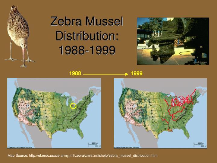 Zebra Mussel Distribution: