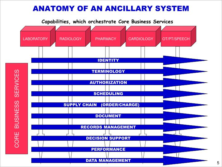 ANATOMY OF AN ANCILLARY SYSTEM