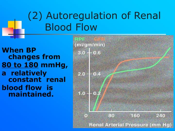 (2) Autoregulation of Renal