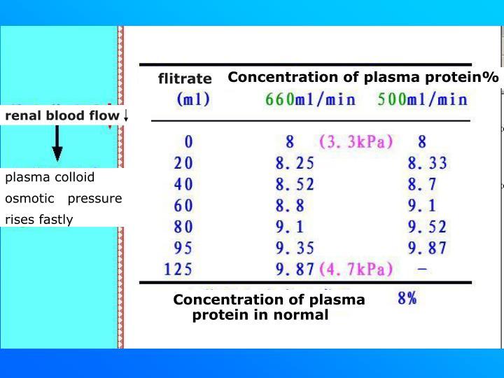 renal plasma