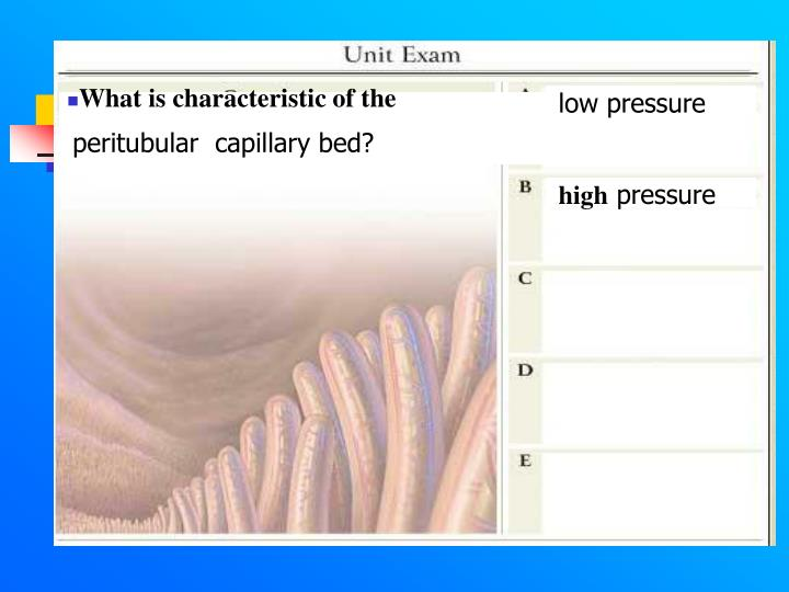 What is characteristic of the