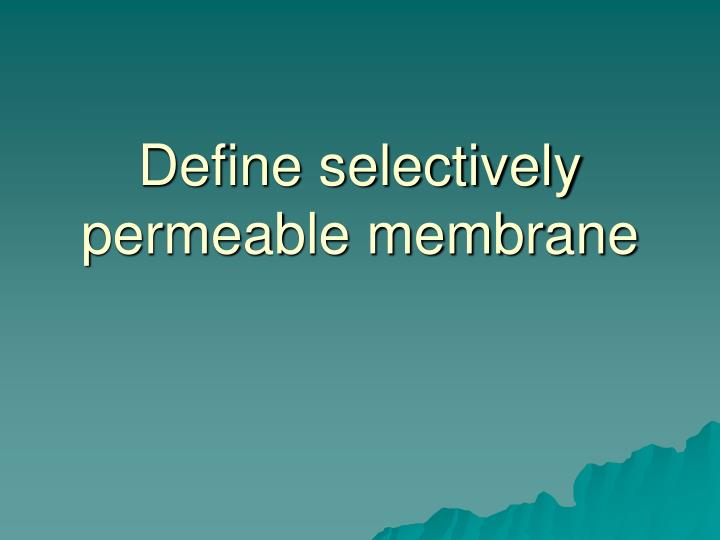 Define selectively permeable membrane