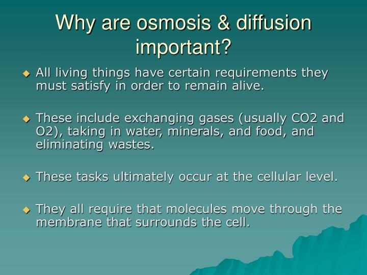 Why are osmosis & diffusion important?