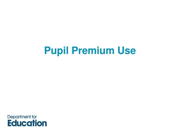 Pupil Premium Use