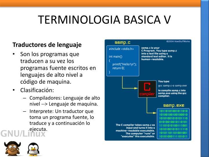 TERMINOLOGIA BASICA V