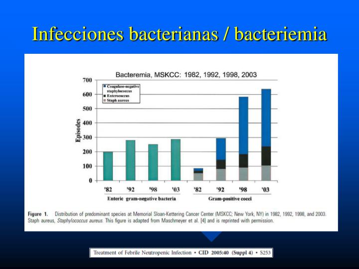 Infecciones bacterianas / bacteriemia