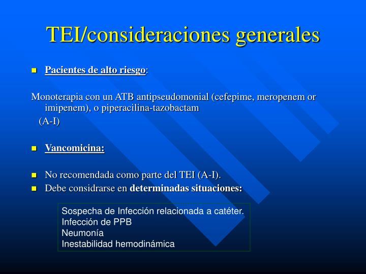 TEI/consideraciones generales