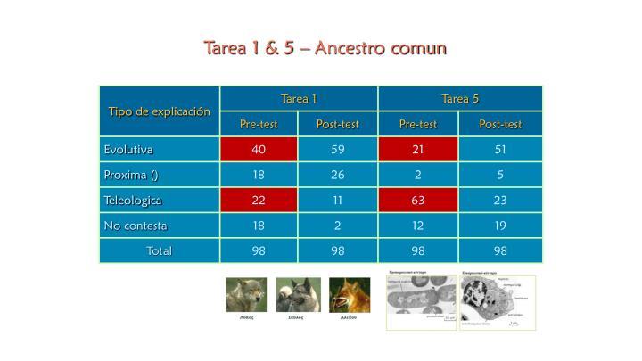 Tarea 1 & 5 – Ancestro comun