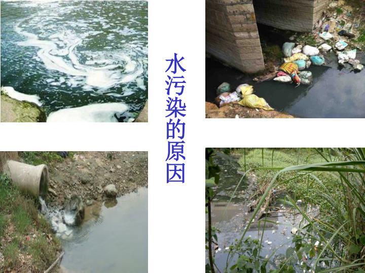 水污染的原因