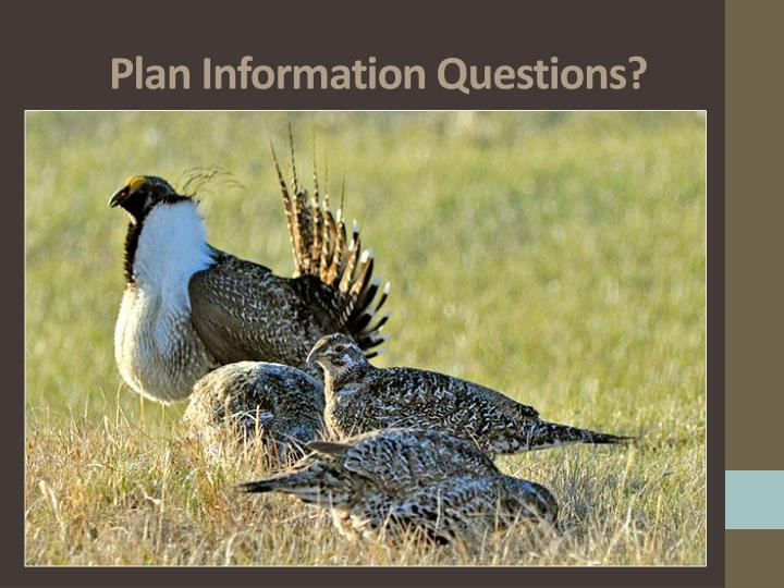 Plan Information Questions?