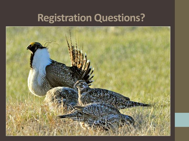 Registration Questions?