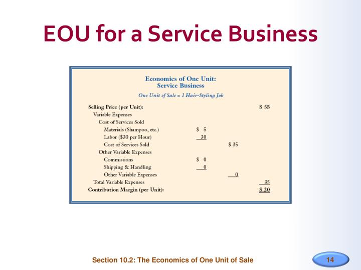 EOU for a Service Business