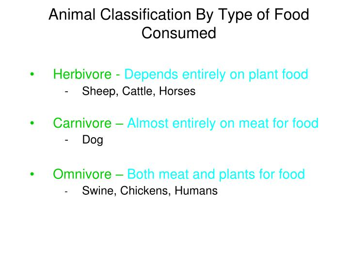 Animal Classification By Type of Food Consumed
