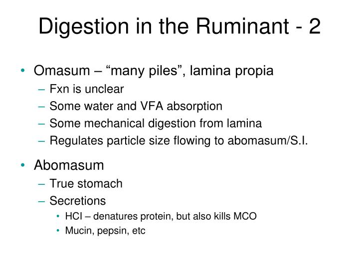 Digestion in the Ruminant - 2