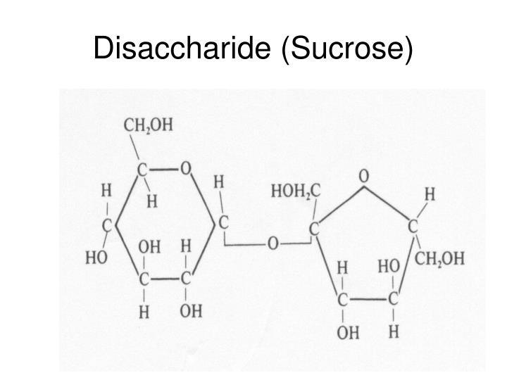 Disaccharide (Sucrose)