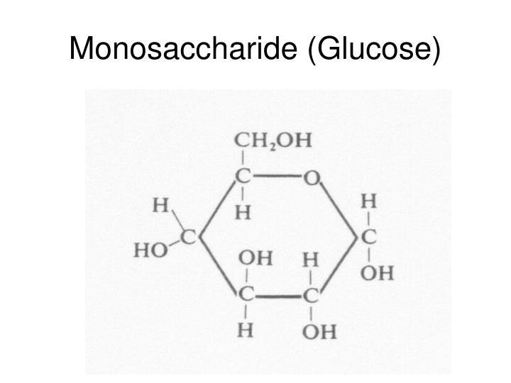 Monosaccharide (Glucose)