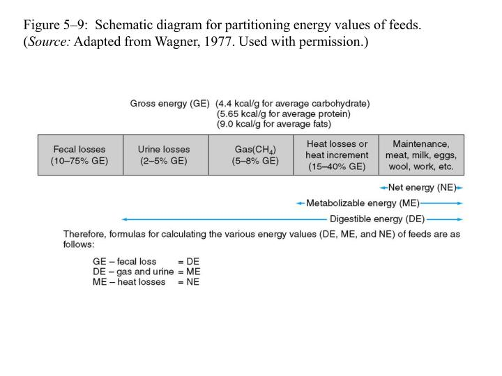 Figure 5–9:  Schematic diagram for partitioning energy values of feeds. (