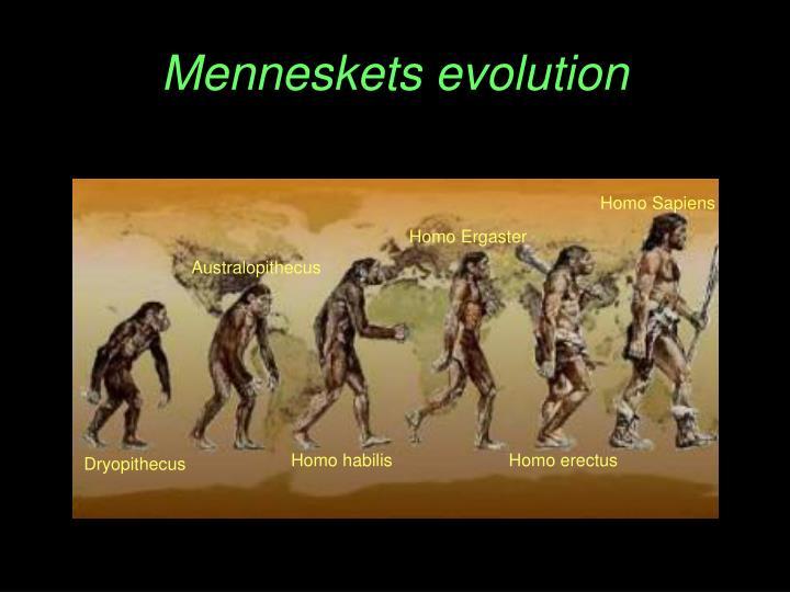 Menneskets evolution