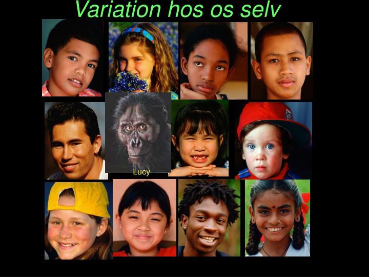 Variation hos os selv