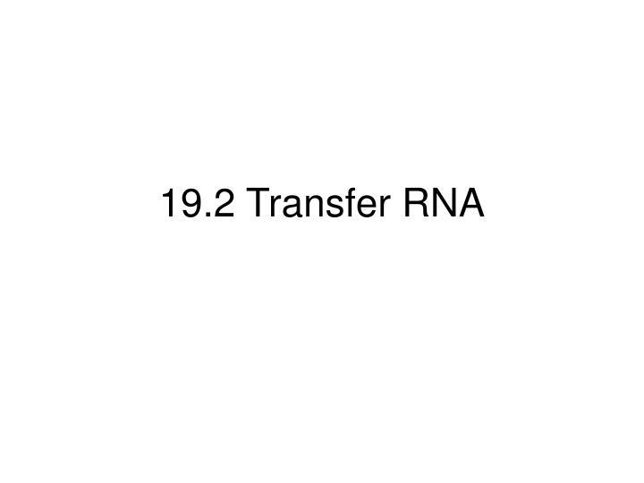 19.2 Transfer RNA