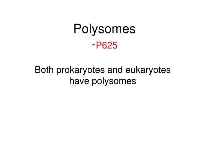 Polysomes