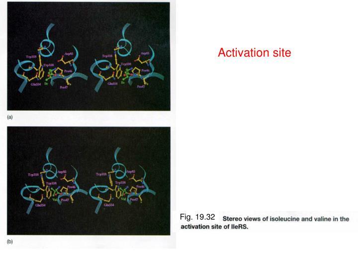Activation site