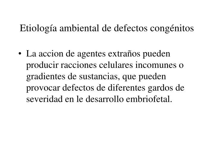 Etiología ambiental de defectos congénitos
