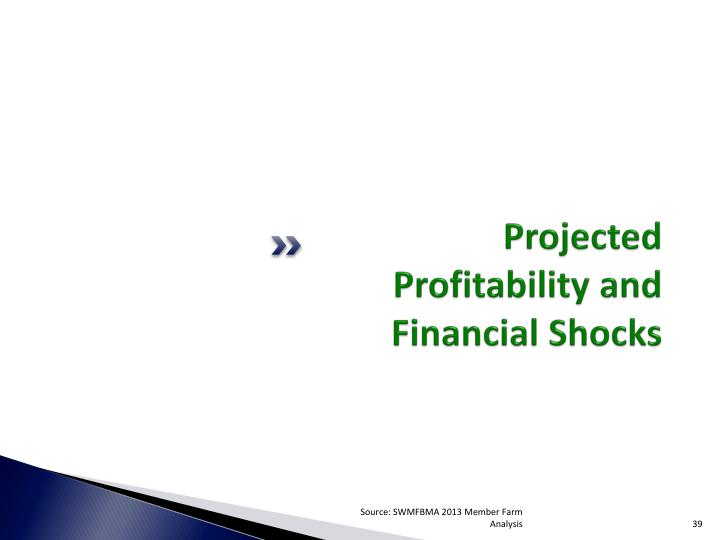 Projected Profitability and Financial Shocks