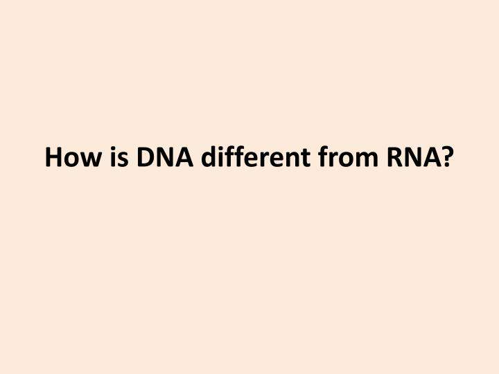 How is DNA different from RNA?