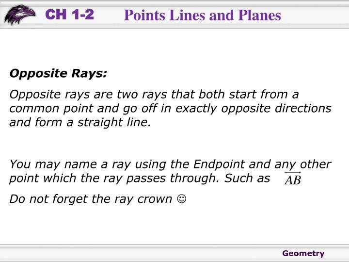 Opposite Rays: