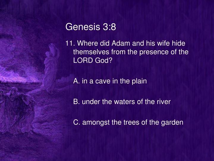 Genesis 3:8