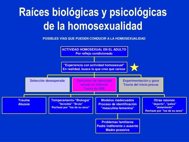 Raíces biológicas y psicológicas de la homosexualidad