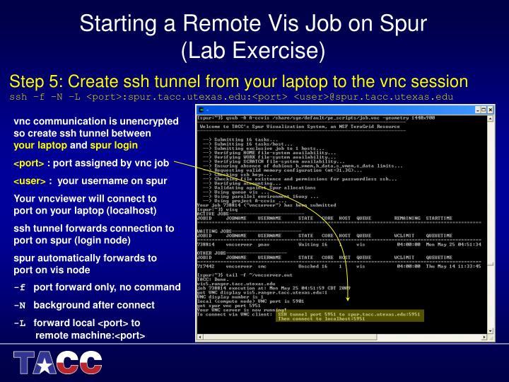 Starting a Remote Vis Job on Spur