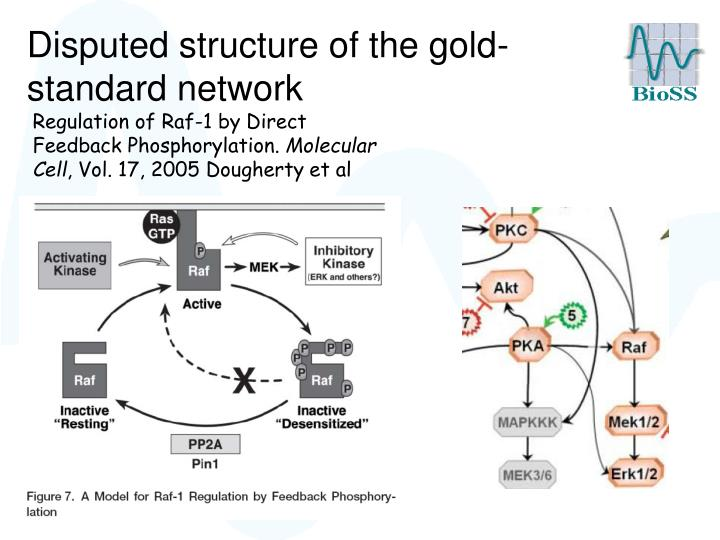 Disputed structure of the gold-standard network