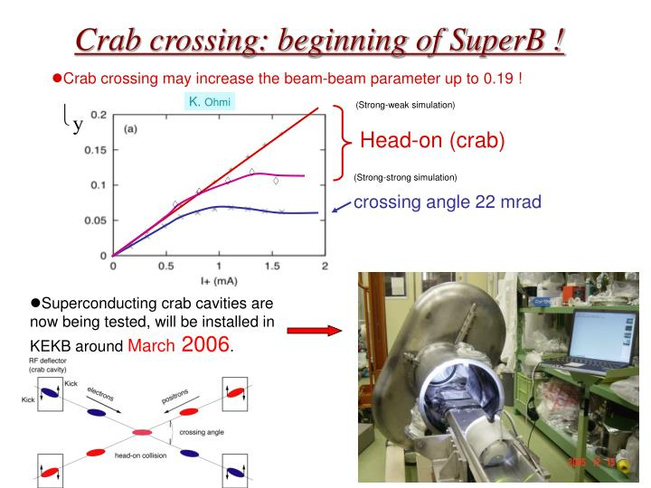 Crab crossing beginning of superb