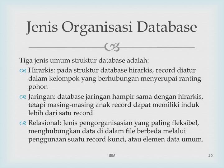 Jenis Organisasi