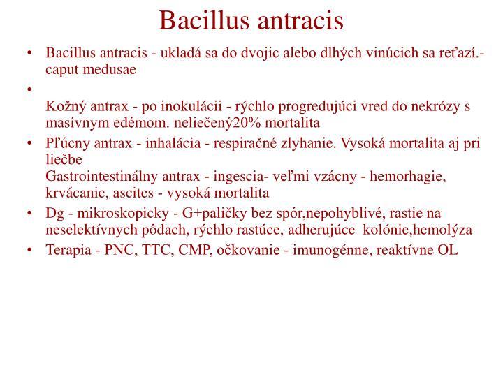 Bacillus antracis