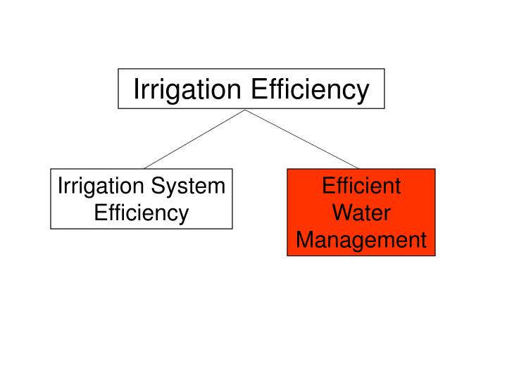 Irrigation Efficiency