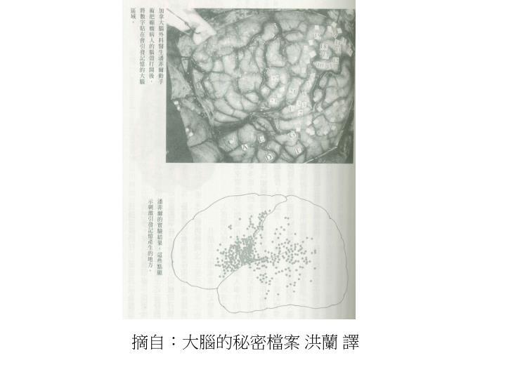 摘自:大腦的秘密檔案 洪蘭 譯